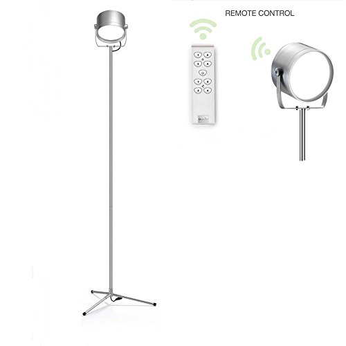 oxyled f10 remote control led floor lamp for living room. Black Bedroom Furniture Sets. Home Design Ideas
