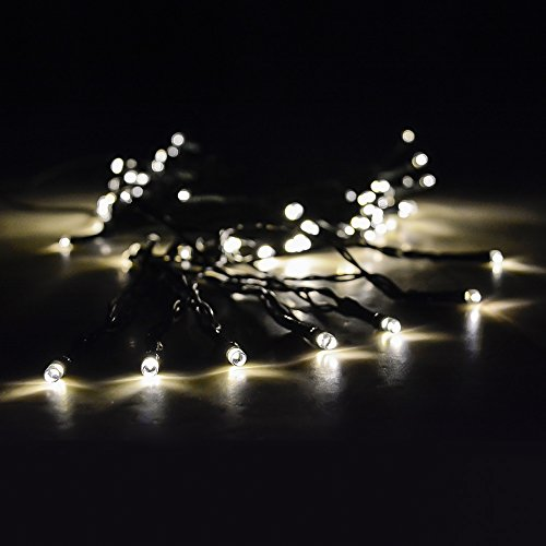 Solar Christmas Lights With Long-Lasting LEDs By Earth