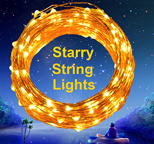 Extra Long 40ft 125 LEDs Warm White LED Copper Wire Indoor Outdoor String Lights + Include 6V DC ...