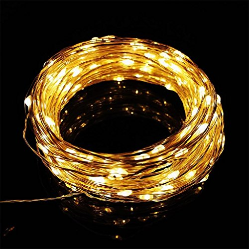 Long String Lights Indoor : AMARS Waterproof Garden LED String Lights, Flexible 66ft 200leds Outdoor Starry Silver Wire ...